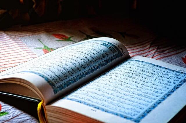 meilleur livre apprendre arabe