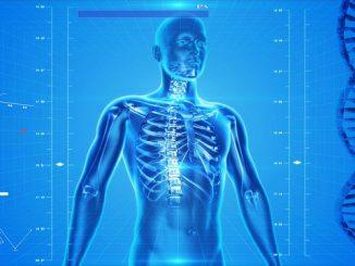 meilleur livre anatomie et physiologie